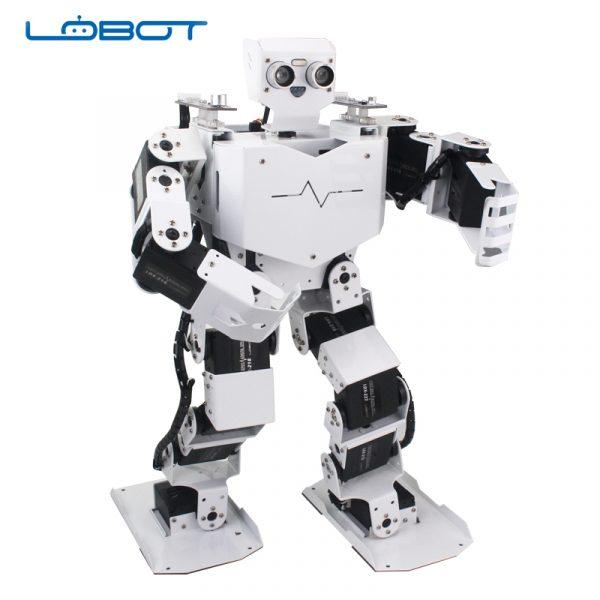 LOBOT1