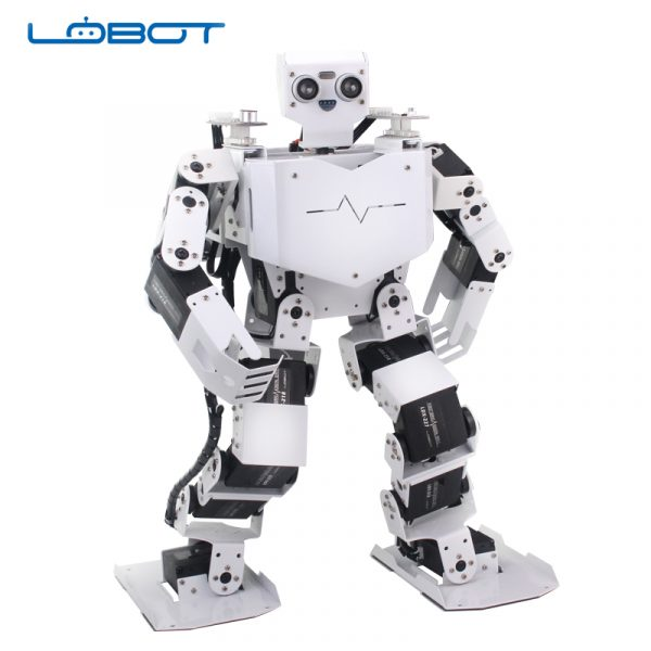 LOBOT2