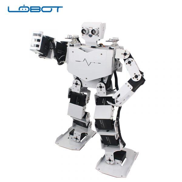 LOBOT3